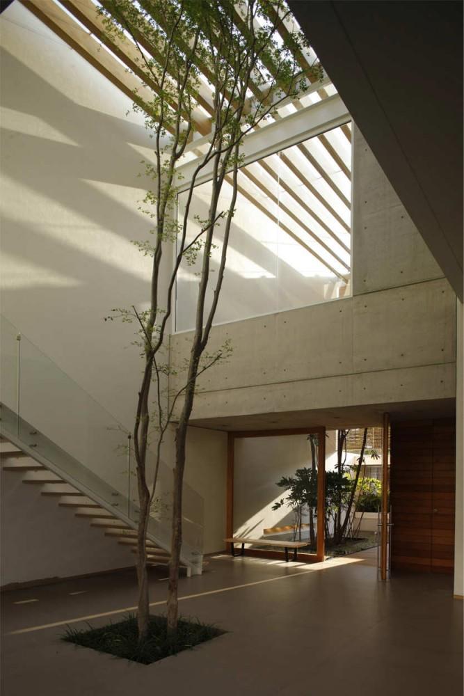 architetturedinterni-casa-lucke-orozco-10